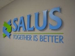 Salus internal lettering and branding