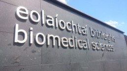 Campus Wayfinding - NUI Galway stainless steel external lettering
